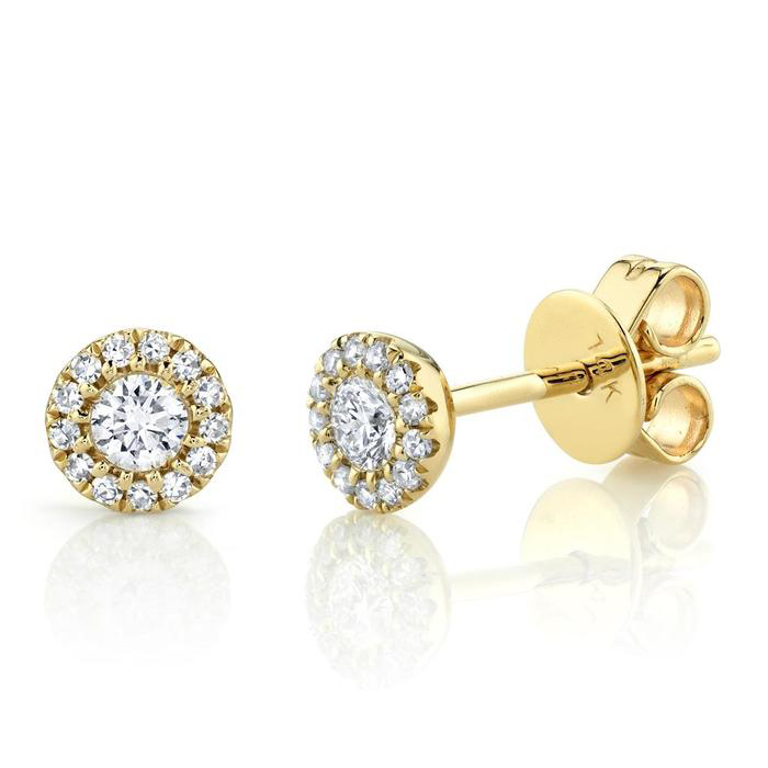 Bailey's Icon Collection Halo Stud Earrings